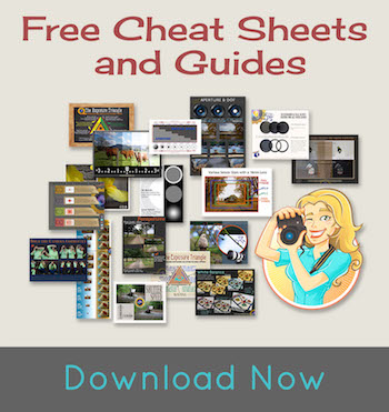 Free photography cheat sheets and guides