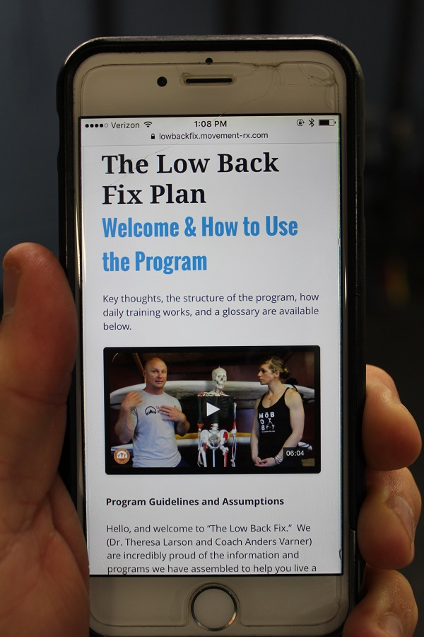 the low back fix plan
