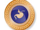 Bronzen programma virtuele maagband