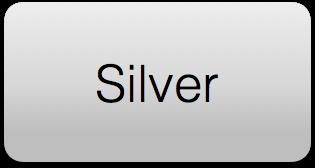 Silver rectangular button